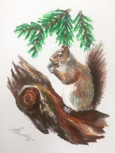 """Hungry""   Grey squirrel study"